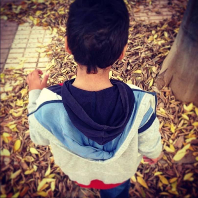 caminar sobre hojas secas otoño