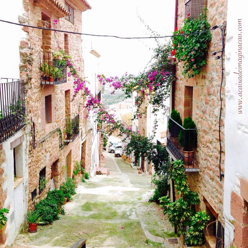 calle con flores la caja de imaginación